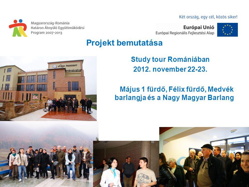Projekt bemutatása Study tour Romániában 2012. november 22-23.