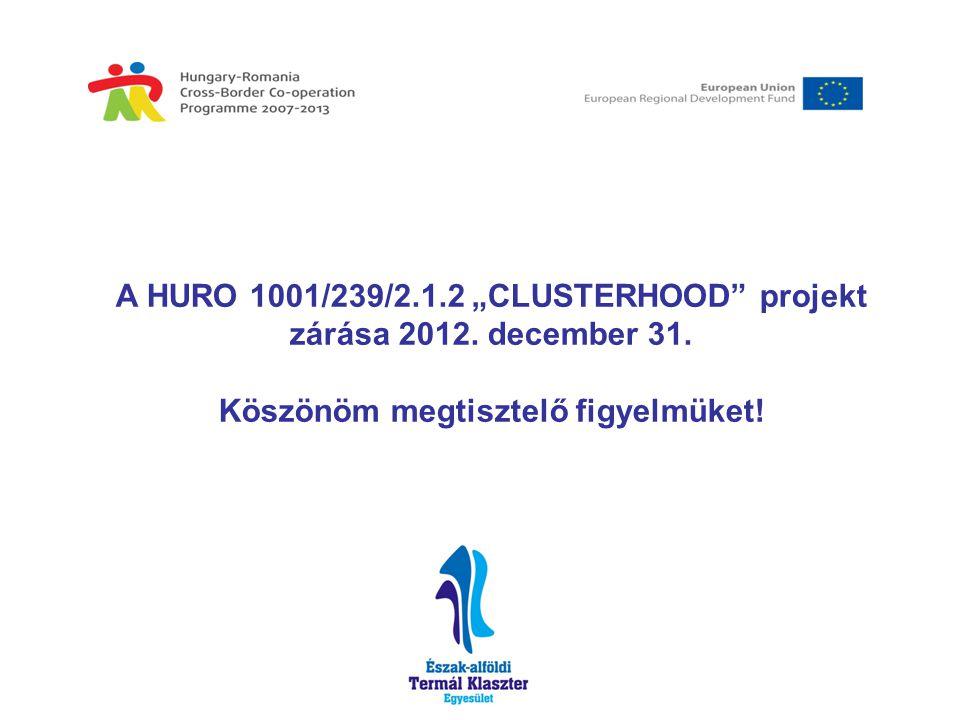 """A HURO 1001/239/2.1.2 """"CLUSTERHOOD projekt zárása 2012."""