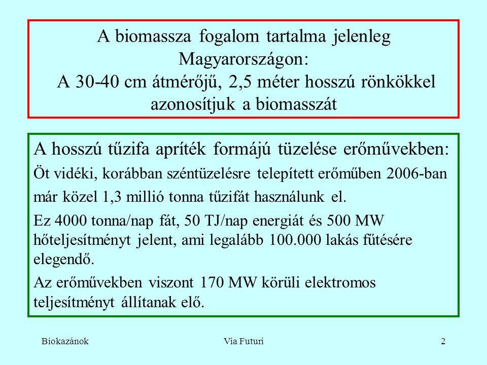 BiokazánokVia Futuri2 A biomassza fogalom tartalma jelenleg Magyarországon: A 30-40 cm átmérőjű, 2,5 méter hosszú rönkökkel azonosítjuk a biomasszát A hosszú tűzifa apríték formájú tüzelése erőművekben: Öt vidéki, korábban széntüzelésre telepített erőműben 2006-ban már közel 1,3 millió tonna tűzifát használunk el.