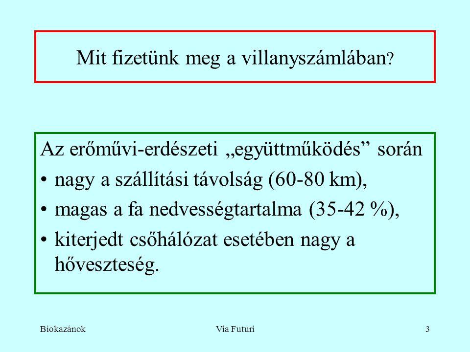 """BiokazánokVia Futuri3 Mit fizetünk meg a villanyszámlában ? Az erőművi-erdészeti """"együttműködés"""" során nagy a szállítási távolság (60-80 km), magas a"""