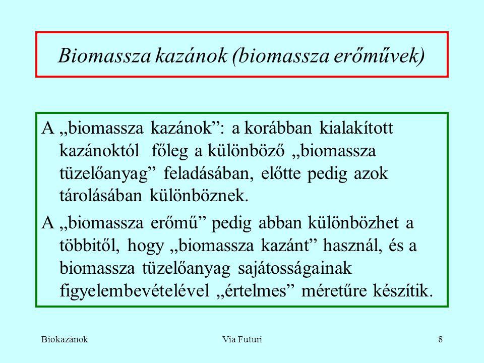 """BiokazánokVia Futuri8 Biomassza kazánok (biomassza erőművek) A """"biomassza kazánok : a korábban kialakított kazánoktól főleg a különböző """"biomassza tüzelőanyag feladásában, előtte pedig azok tárolásában különböznek."""