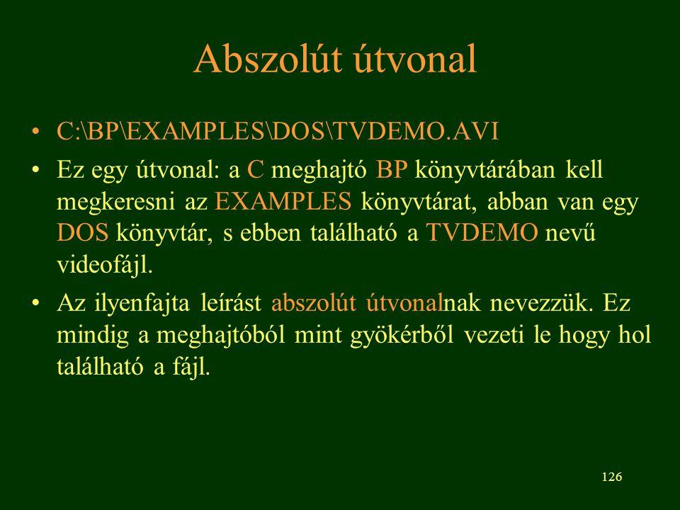 126 Abszolút útvonal C:\BP\EXAMPLES\DOS\TVDEMO.AVI Ez egy útvonal: a C meghajtó BP könyvtárában kell megkeresni az EXAMPLES könyvtárat, abban van egy DOS könyvtár, s ebben található a TVDEMO nevű videofájl.
