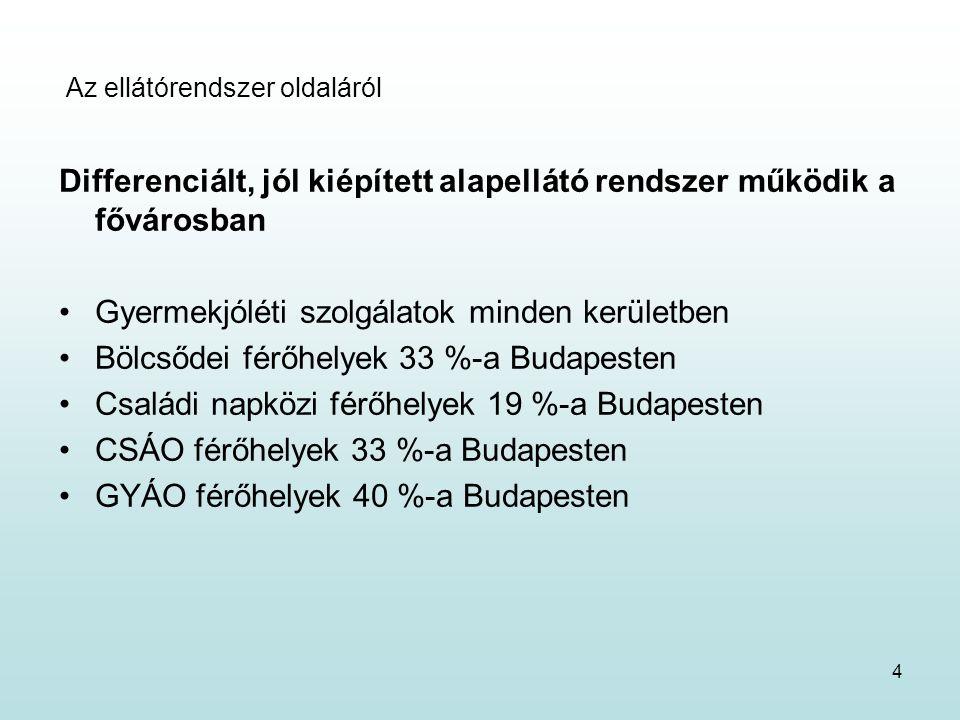 4 Az ellátórendszer oldaláról Differenciált, jól kiépített alapellátó rendszer működik a fővárosban Gyermekjóléti szolgálatok minden kerületben Bölcsődei férőhelyek 33 %-a Budapesten Családi napközi férőhelyek 19 %-a Budapesten CSÁO férőhelyek 33 %-a Budapesten GYÁO férőhelyek 40 %-a Budapesten