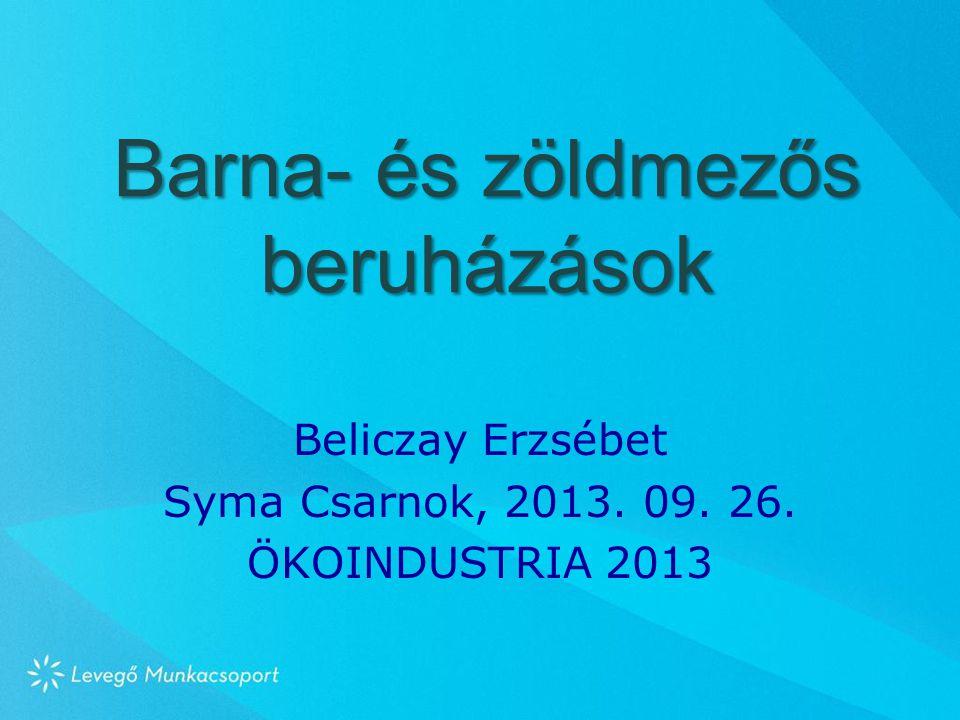 Barna- és zöldmezős beruházások Beliczay Erzsébet Syma Csarnok, 2013. 09. 26. ÖKOINDUSTRIA 2013