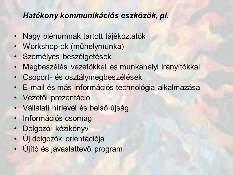 Hatékony kommunikációs eszközök, pl. Nagy plénumnak tartott tájékoztatók Workshop-ok (műhelymunka) Személyes beszélgetések Megbeszélés vezetőkkel és m