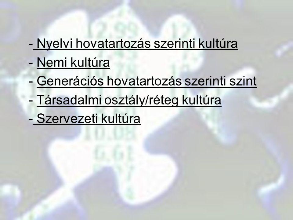 - Nyelvi hovatartozás szerinti kultúra - Nemi kultúra - Generációs hovatartozás szerinti szint - Társadalmi osztály/réteg kultúra - Szervezeti kultúra