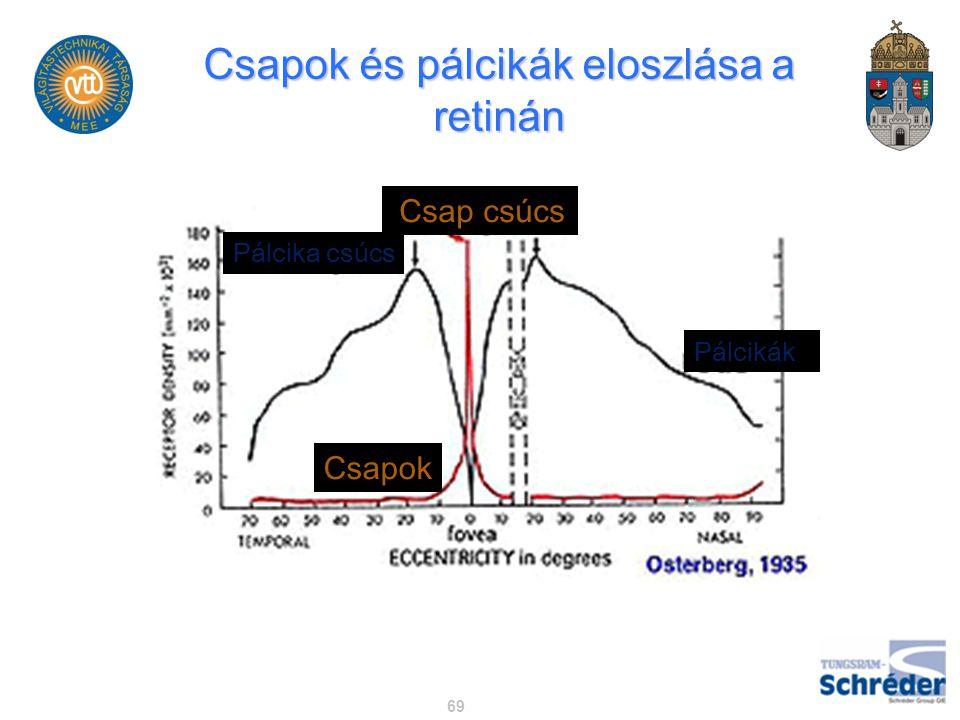 Csapok és pálcikák eloszlása a retinán 69 Csap csúcs Pálcikák Pálcika csúcs Csapok