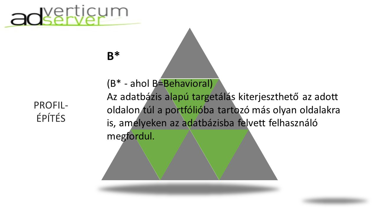 PROFIL- ÉPÍTÉS B* (B* - ahol B=Behavioral) Az adatbázis alapú targetálás kiterjeszthető az adott oldalon túl a portfólióba tartozó más olyan oldalakra is, amelyeken az adatbázisba felvett felhasználó megfordul.