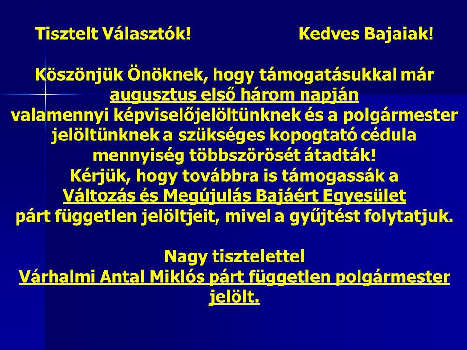 Takácsné Egyed Diána VIII. választókerület Várhalmi Miklós IX.