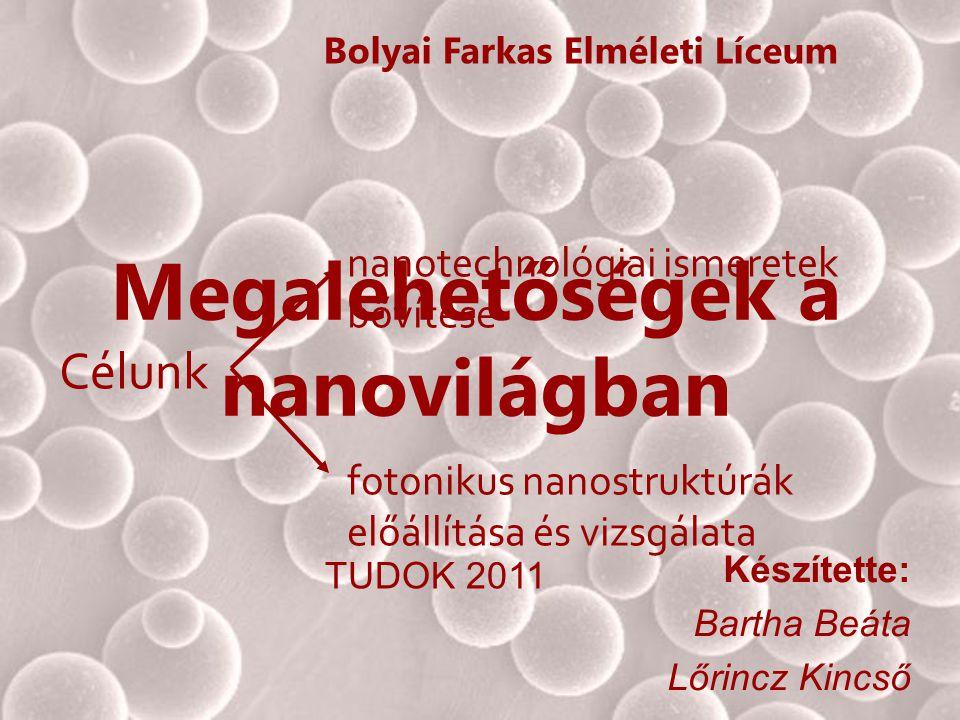 Megalehetőségek a nanovilágban Készítette: Bartha Beáta Lőrincz Kincső Bolyai Farkas Elméleti Líceum TUDOK 2011 nanotechnológiai ismeretek bővítése Cé