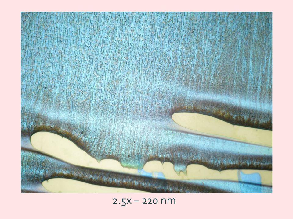 Megalehetőségek fotonikus kristályok technológiai forradalom e-e- félvezető fotonok