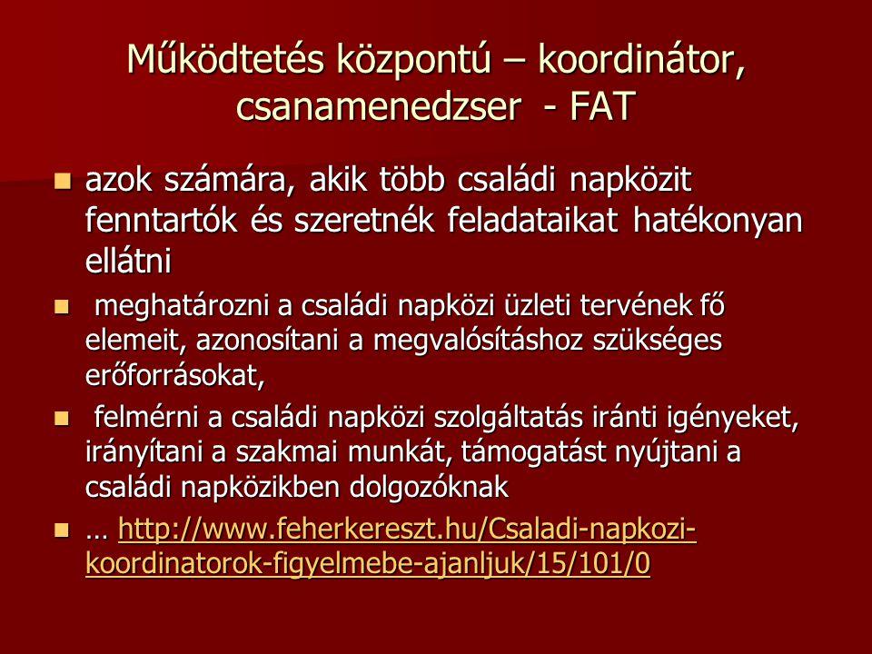 Működtetés központú – koordinátor, csanamenedzser - FAT azok számára, akik több családi napközit fenntartók és szeretnék feladataikat hatékonyan ellát
