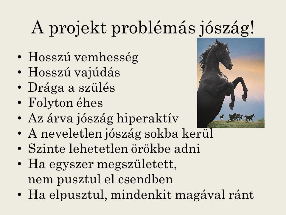 A projekt problémás jószág.