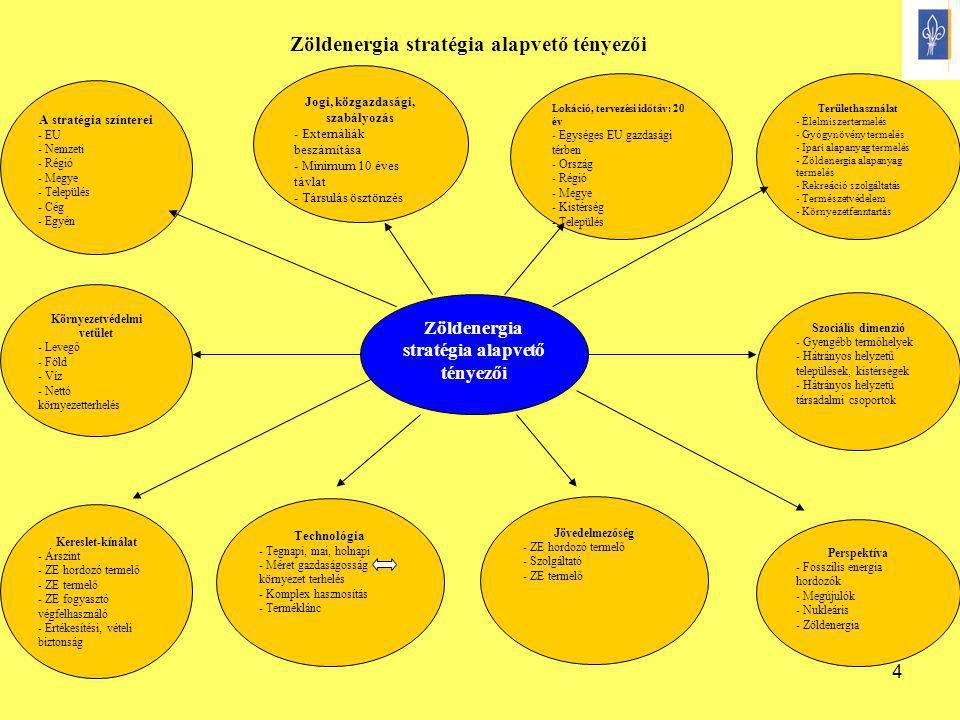 4 Zöldenergia stratégia alapvető tényezői Perspektíva - Fosszilis energia hordozók - Megújulók - Nukleáris - Zöldenergia Jövedelmezőség - ZE hordozó t