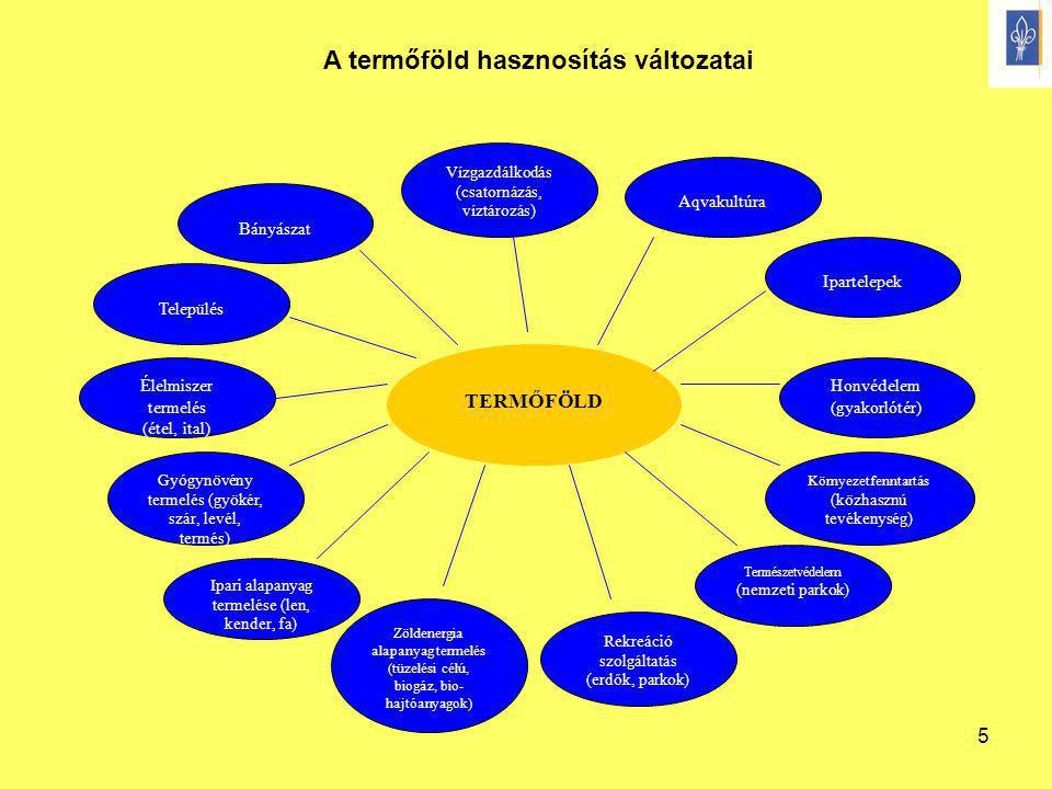 5 TERMŐFÖLD Bányászat Település Vízgazdálkodás (csatornázás, víztározás) Aqvakultúra Élelmiszer termelés (étel, ital) Gyógynövény termelés (gyökér, sz