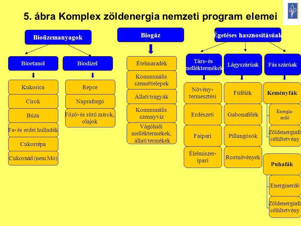 7 5. ábra Komplex zöldenergia nemzeti program elemei Bioüzemanyagok BiogázÉgetéses hasznosításúak BioetanolBiodízel Kukorica Cirok Fa- és erdei hullad