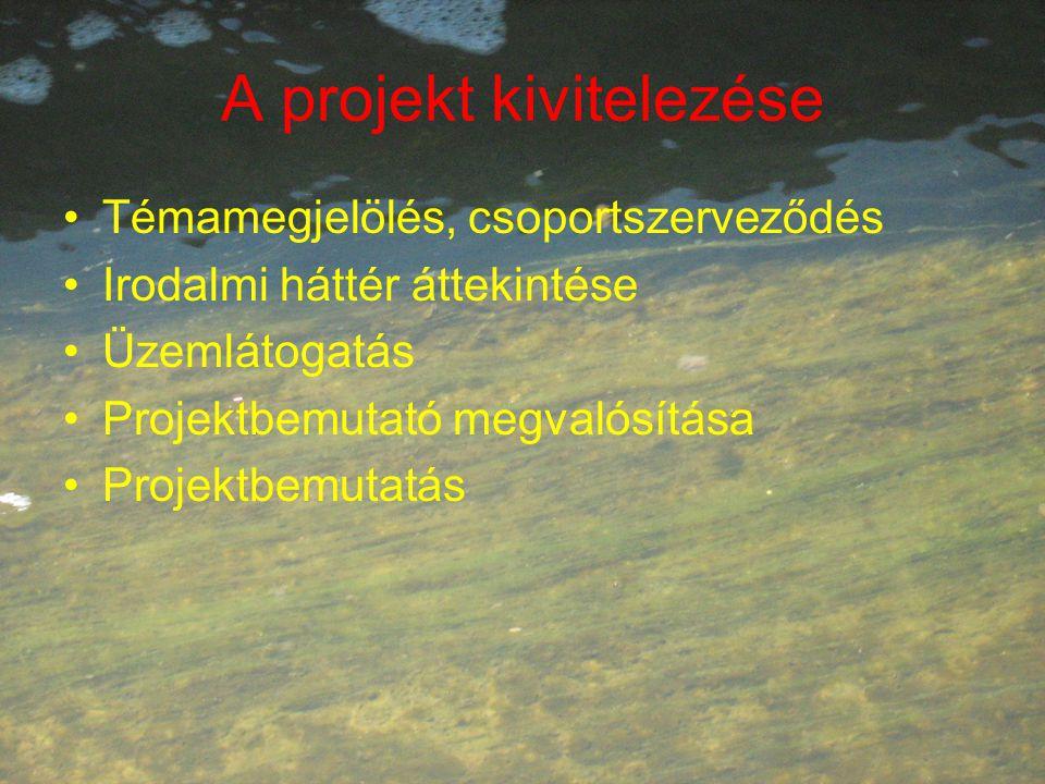 A projekt kivitelezése Témamegjelölés, csoportszerveződés Irodalmi háttér áttekintése Üzemlátogatás Projektbemutató megvalósítása Projektbemutatás