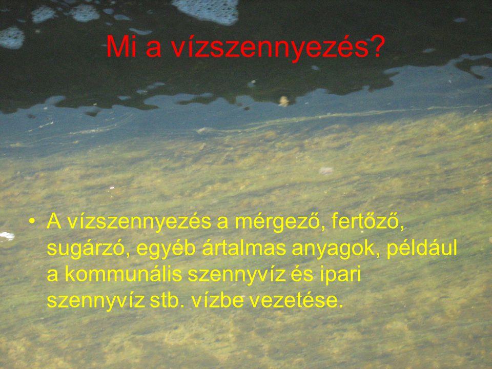 Mi a vízszennyezés.