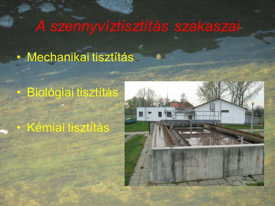A szennyvíztisztítás szakaszai Mechanikai tisztítás Biológiai tisztítás Kémiai tisztítás