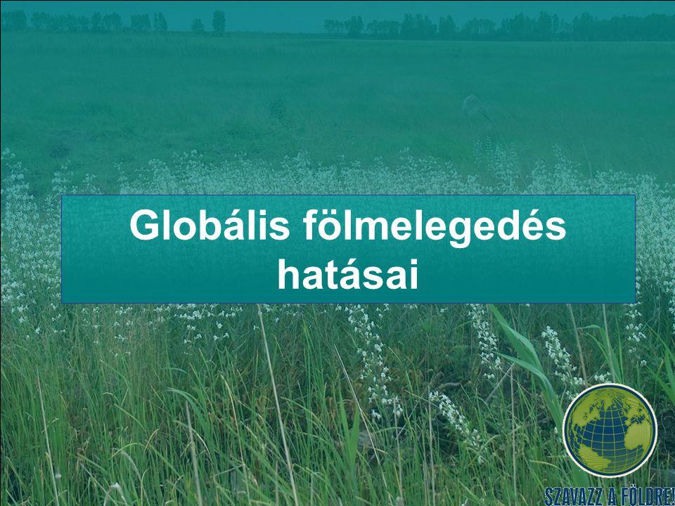 Globális fölmelegedés hatásai
