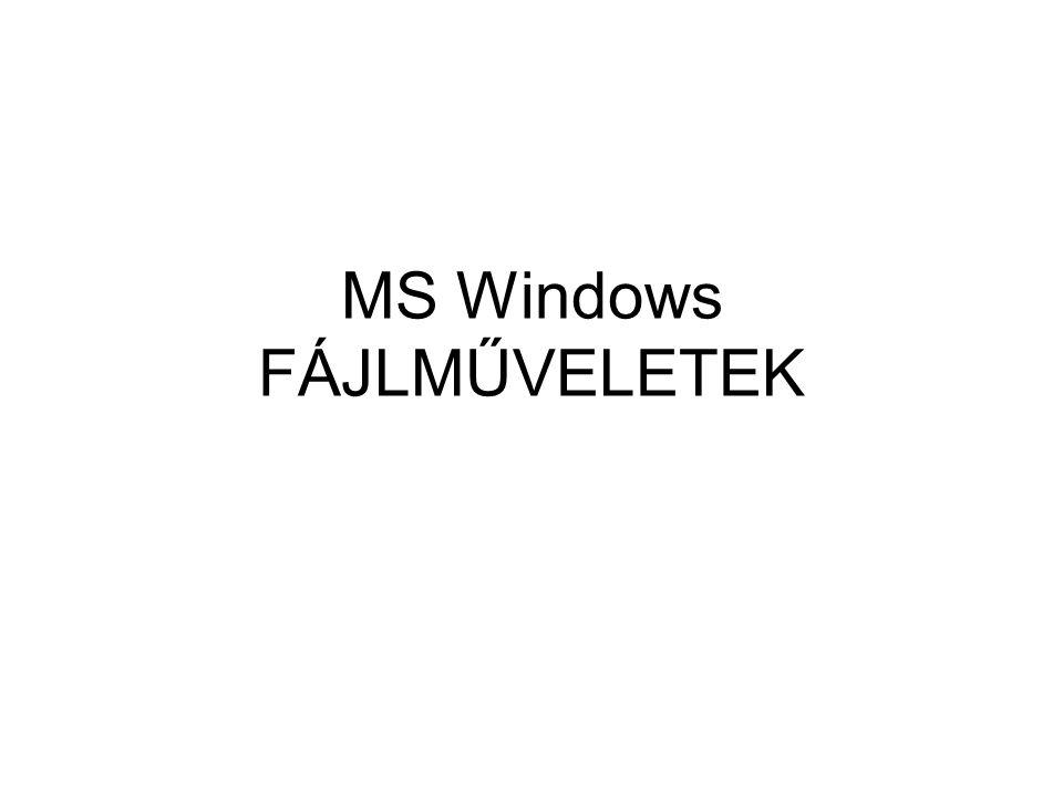 MS Windows FÁJLMŰVELETEK
