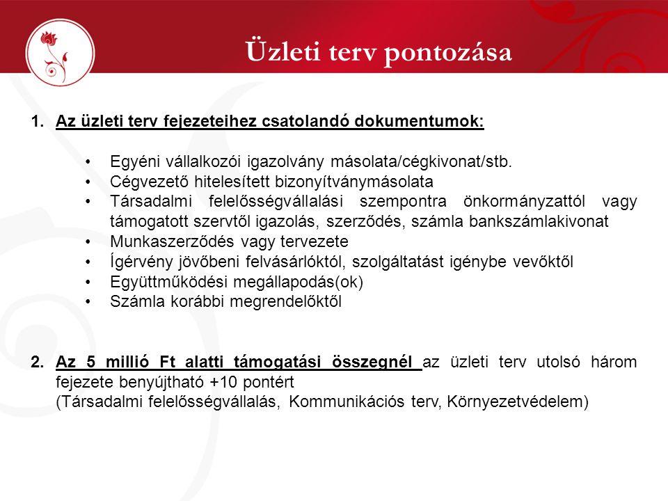 Üzleti terv pontozása 1.Az üzleti terv fejezeteihez csatolandó dokumentumok: Egyéni vállalkozói igazolvány másolata/cégkivonat/stb.