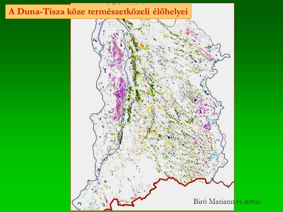 A Duna-Tisza köze természetközeli élőhelyei Biró Mariann és mtsai