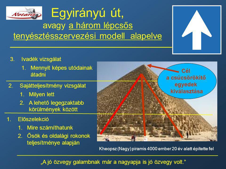 Egyirányú út, avagy a három lépcsős tenyésztésszervezési modell alapelve 1.Előszelekció 1.Mire számíthatunk 2.Ősök és oldalági rokonok teljesítménye a