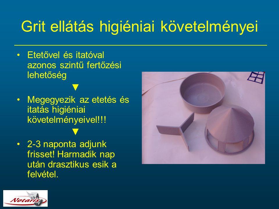 Grit ellátás higiéniai követelményei Etetővel és itatóval azonos szintű fertőzési lehetőség ▼ Megegyezik az etetés és itatás higiéniai követelményeive