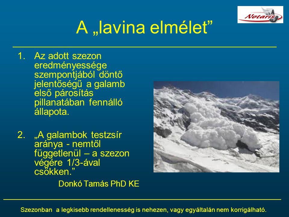 """A """"lavina elmélet"""" 1.Az adott szezon eredményessége szempontjából döntő jelentőségű a galamb első párosítás pillanatában fennálló állapota. 2.""""A galam"""