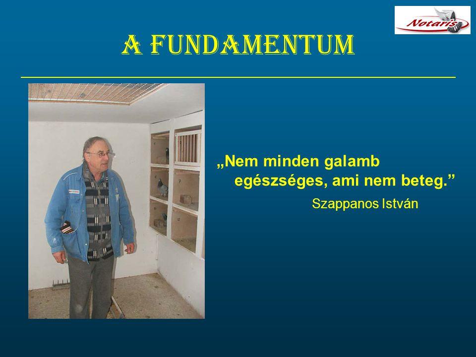 """A fundamentum """"Nem minden galamb egészséges, ami nem beteg."""" Szappanos István"""