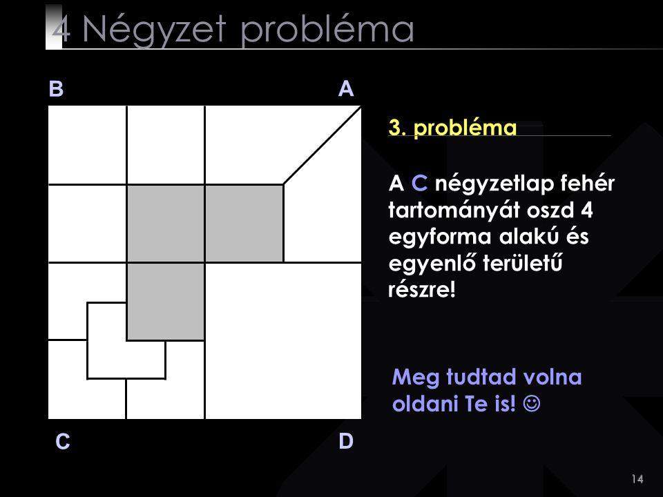 14 Meg tudtad volna oldani Te is! B A D C 3. probléma 4 Négyzet probléma A C négyzetlap fehér tartományát oszd 4 egyforma alakú és egyenlő területű ré