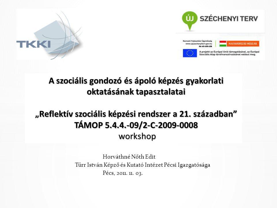 Horváthné Nőth Edit Türr István Képző és Kutató Intézet Pécsi Igazgatósága Pécs, 2011. 11. 03.