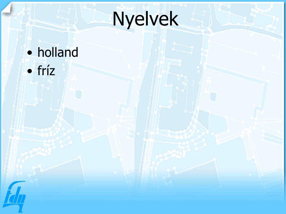 Nyelvek holland fríz