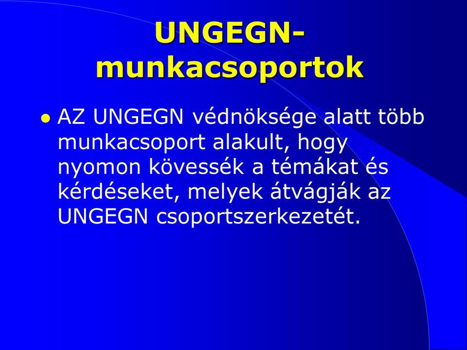 UNGEGN- munkacsoportok l AZ UNGEGN védnöksége alatt több munkacsoport alakult, hogy nyomon kövessék a témákat és kérdéseket, melyek átvágják az UNGEGN csoportszerkezetét.