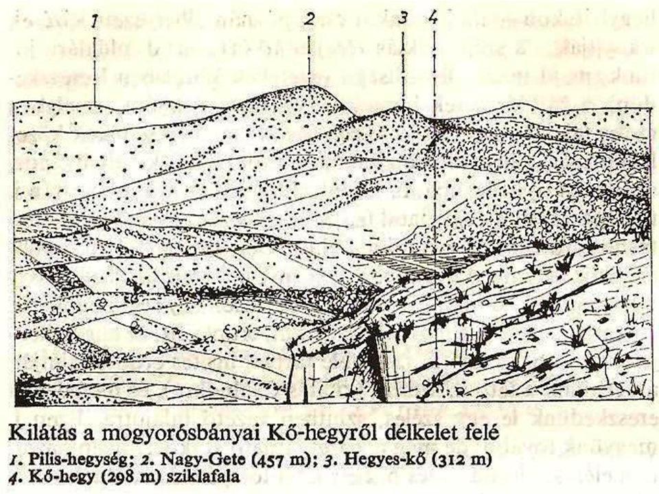 Tapintásos térkép A vakok és gyengén látók számára Térképész, pszichológus, tanár és a látássérültek együttműködése Egyszerűsített formák és csak a legfontosabb elemek Két típus –nemcsak a domborzat, hanem a vonalak és a betűk is enyhén kidomborodnak –habosodó festék a sík felületen hő hatására felduzzad (tapintható vonalak, mintázat és írás)