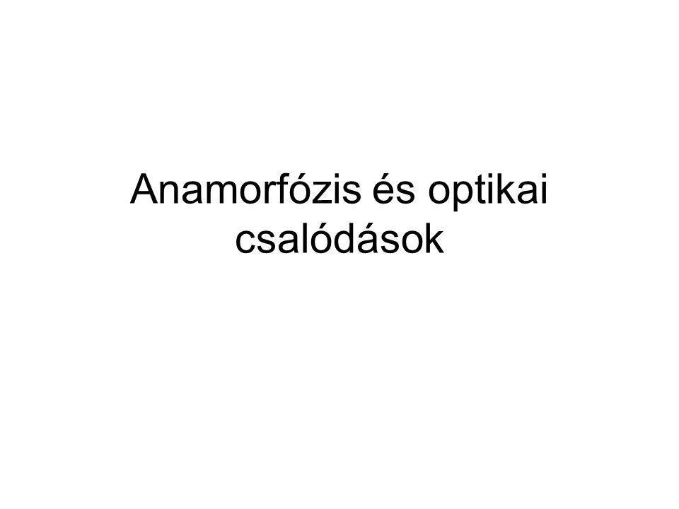 Anamorfózis és optikai csalódások