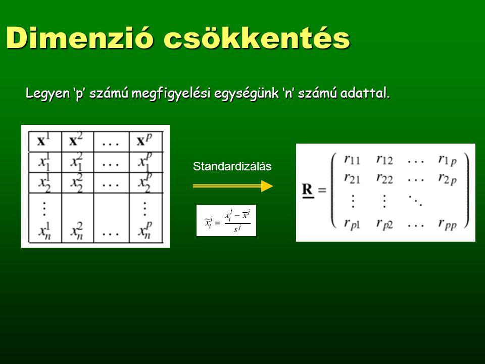 Dimenzió csökkentés Határozzuk meg a korrelációs mátrix sajátértékeit és sajátvektorait, vagyis oldjuk meg a következő sajátérték egyenletet: R v = λ v A λ 1, λ 2,..