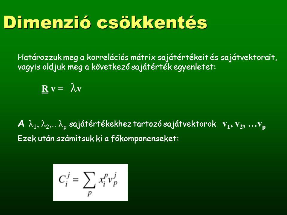 Dimenzió csökkentés A főkomponens analízis geometriai jelentése