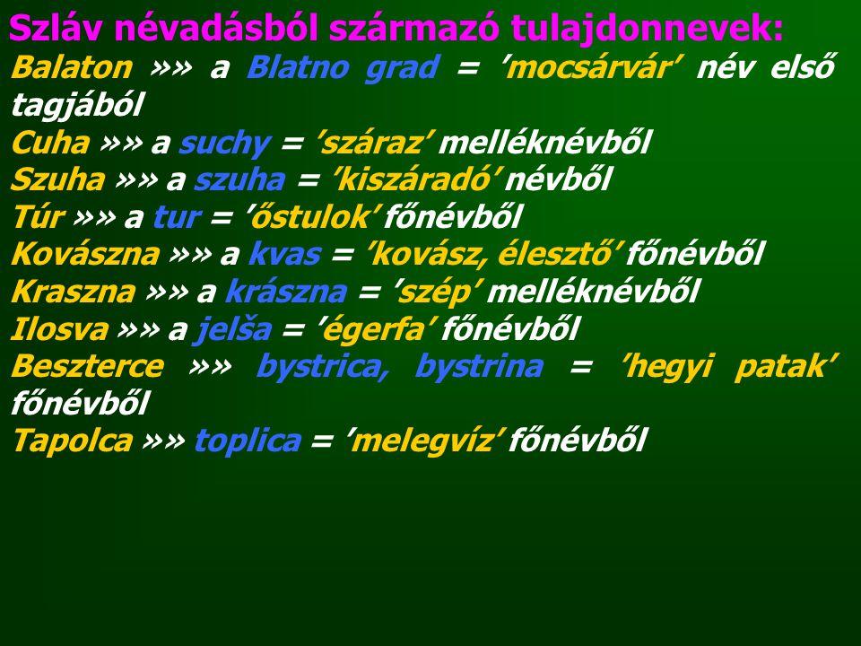 Szláv névadásból származó tulajdonnevek: Balaton »» a Blatno grad = 'mocsárvár' név első tagjából Cuha »» a suchy = 'száraz' melléknévből Szuha »» a s