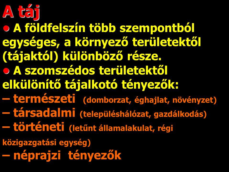 """Alföld, Dunántúl, Erdélyi-med., Kelet-magyar- országi-szigethg., Ény.-Felvidék, Ék.-Felvidék, K.-Kárpátok, Dél-erdélyi-felv., Dinári-Alpok CHOLNOKY JENŐ """"Parcellázó tájbeosztás 1920-1942 9 nagytáj a tört."""