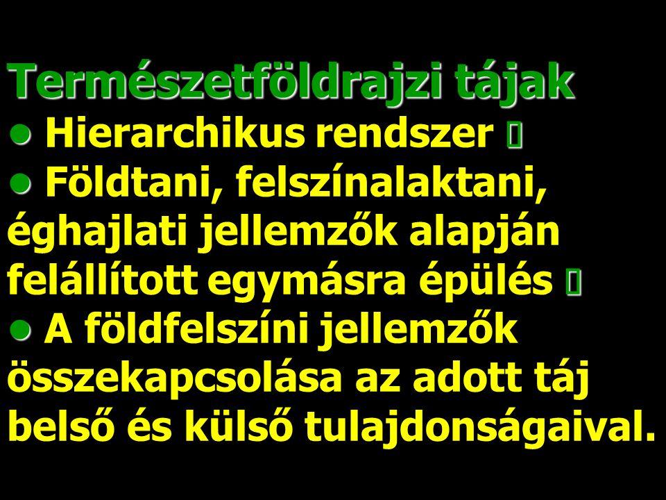 1992-től: kettős tájszemlélet a magyar kartográfiában Pécsi–Marosi– Somogyi–Sárfalvi (FNT I.–MNA) tájszemlélet Pécsi–Marosi– Somogyi–Sárfalvi (FNT I.–MNA) tájszemlélet A határokon túli, kárpát-térségi névanyagban sok idegen hatás A határokon túli, kárpát-térségi névanyagban sok idegen hatás A történeti-földrajzi- néprajzi tájnevek ábrázolása hézagos.