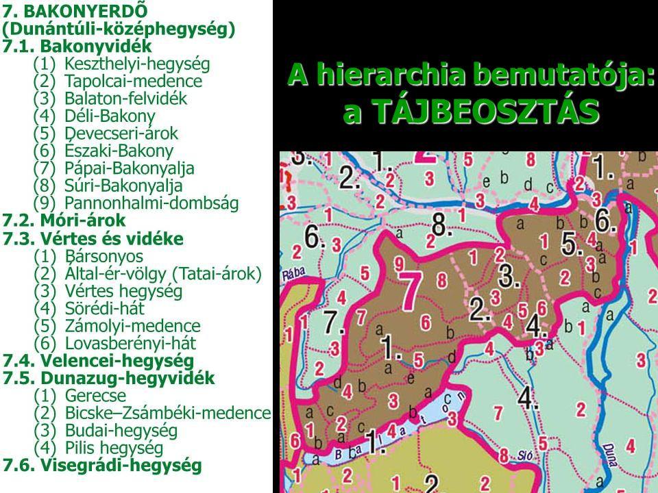 1.A földrajzi nevek köznévi tagjai a latin írásjeleket használó nyelvek köznévi tagjai esetében legtöbb esetben következetesen lefordíthatók.
