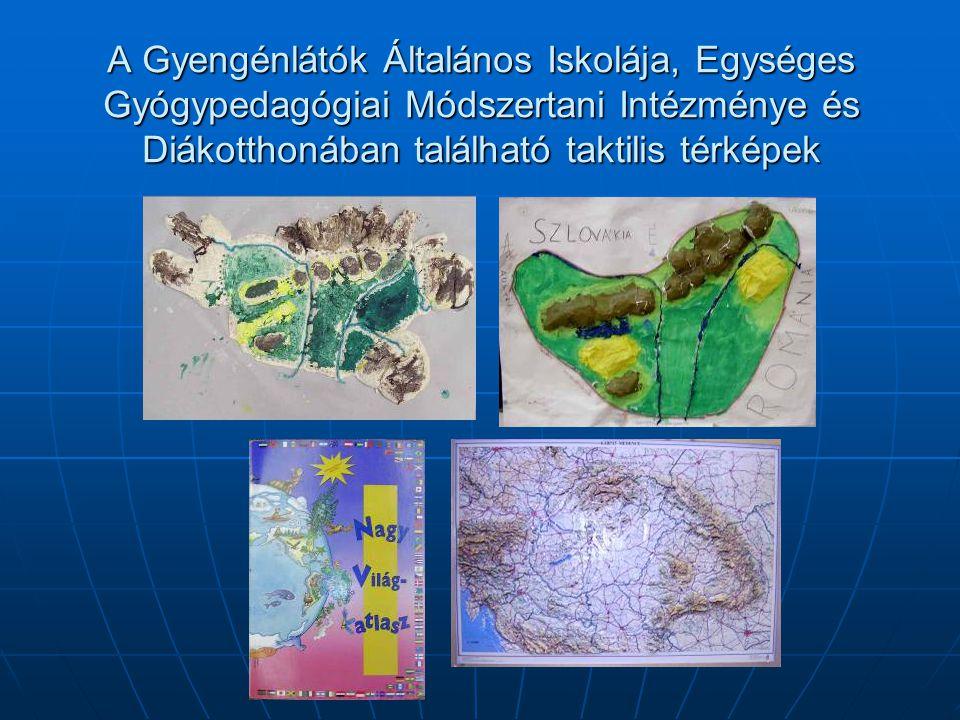 A Gyengénlátók Általános Iskolája, Egységes Gyógypedagógiai Módszertani Intézménye és Diákotthonában található taktilis térképek