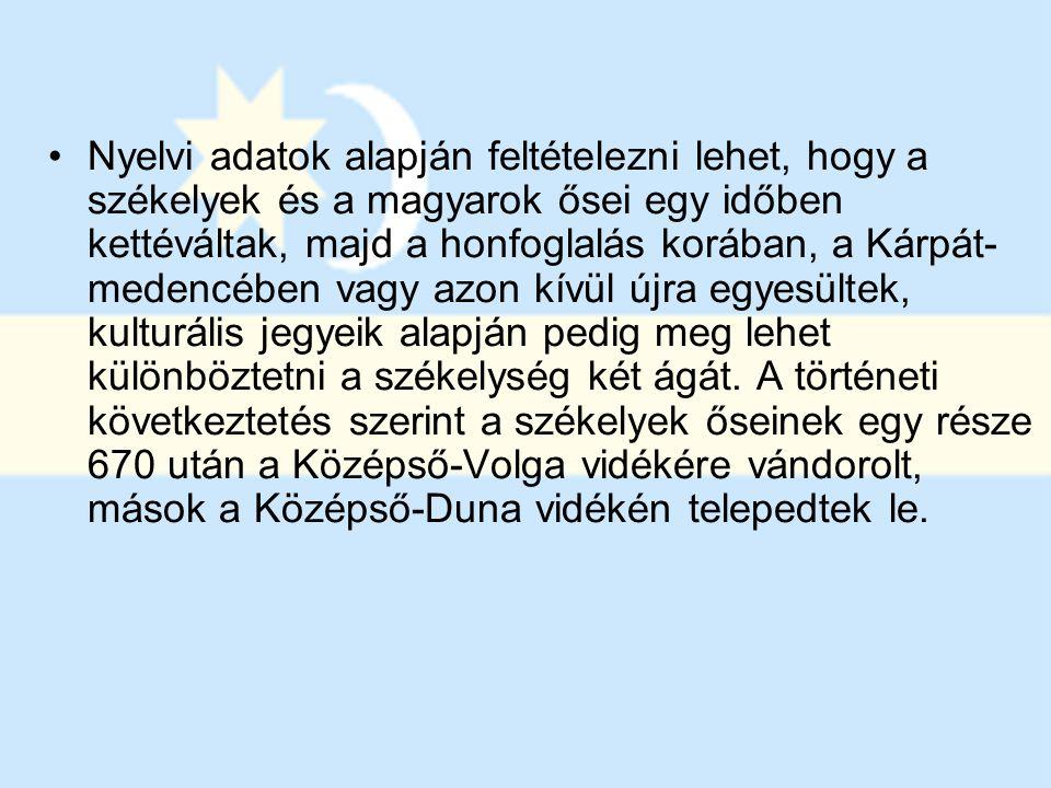 Nyelvi adatok alapján feltételezni lehet, hogy a székelyek és a magyarok ősei egy időben kettéváltak, majd a honfoglalás korában, a Kárpát- medencében