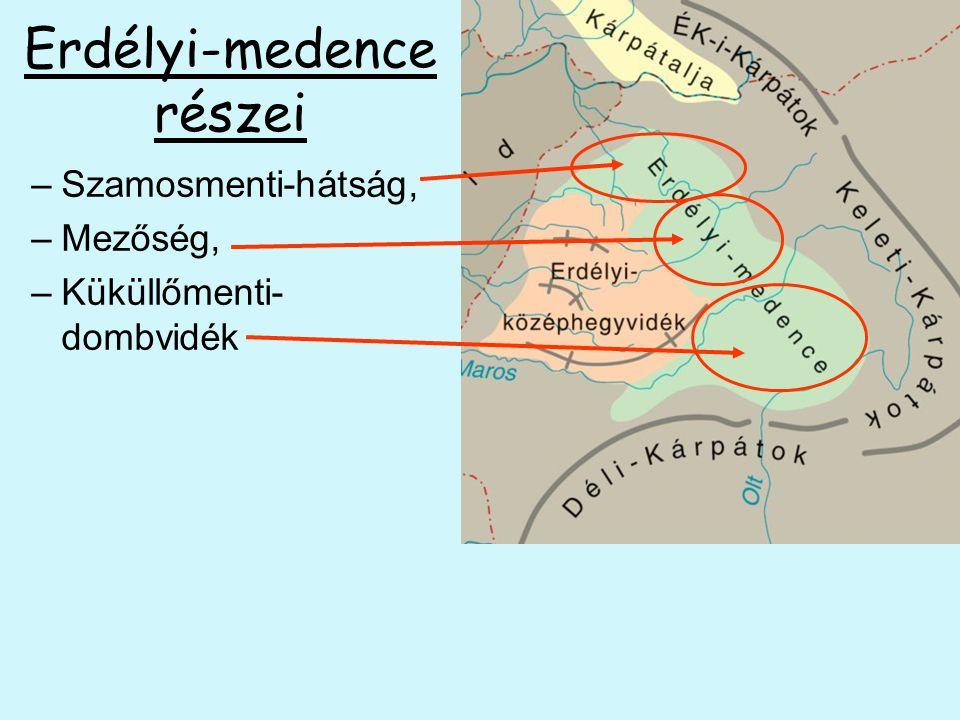 Erdélyi-medence részei –Szamosmenti-hátság, –Mezőség, –Küküllőmenti- dombvidék