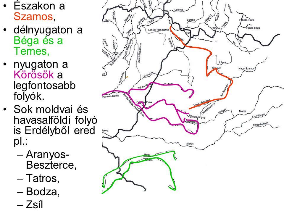 Északon a Szamos, délnyugaton a Béga és a Temes, nyugaton a Körösök a legfontosabb folyók. Sok moldvai és havasalföldi folyó is Erdélyből ered pl.: –A
