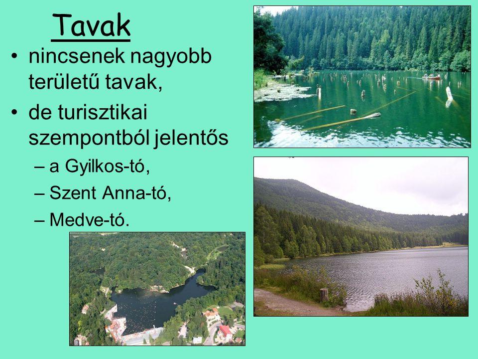 Tavak nincsenek nagyobb területű tavak, de turisztikai szempontból jelentős –a Gyilkos-tó, –Szent Anna-tó, –Medve-tó.