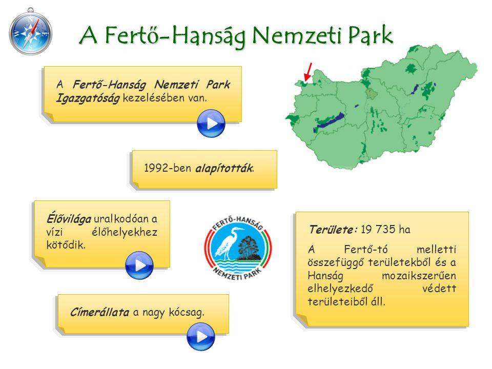 Területe: 19 735 ha A Fertő-tó melletti összefüggő területekből és a Hanság mozaikszerűen elhelyezkedő védett területeiből áll. A Fert ő -Hanság Nemze