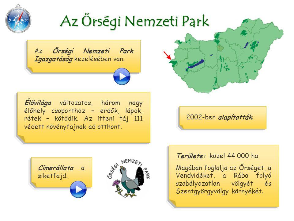 Területe: közel 44 000 ha Magában foglalja az Őrséget, a Vendvidéket, a Rába folyó szabályozatlan völgyét és Szentgyörgyvölgy környékét. Az Ő rségi Ne